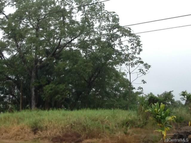 Photo of Lot #31 Ipuaiwaha St, Keaau, HI 96749